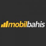 Mobilbahis 150x150 - Kaçak bahis Sitesi Hakkında